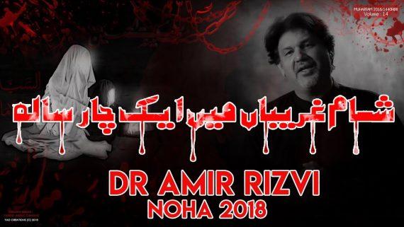 Sham e Gareeban Main Ek Char Sala – Dr. Amir Rizvi New Noha 2018-19 – Noha Shahadat Bibi Sakina