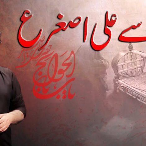 Maa Say Ali Asghar – Dr. Amir Rizvi New Noha 2018-19 – Nohay 2019 | Babul Hawaij